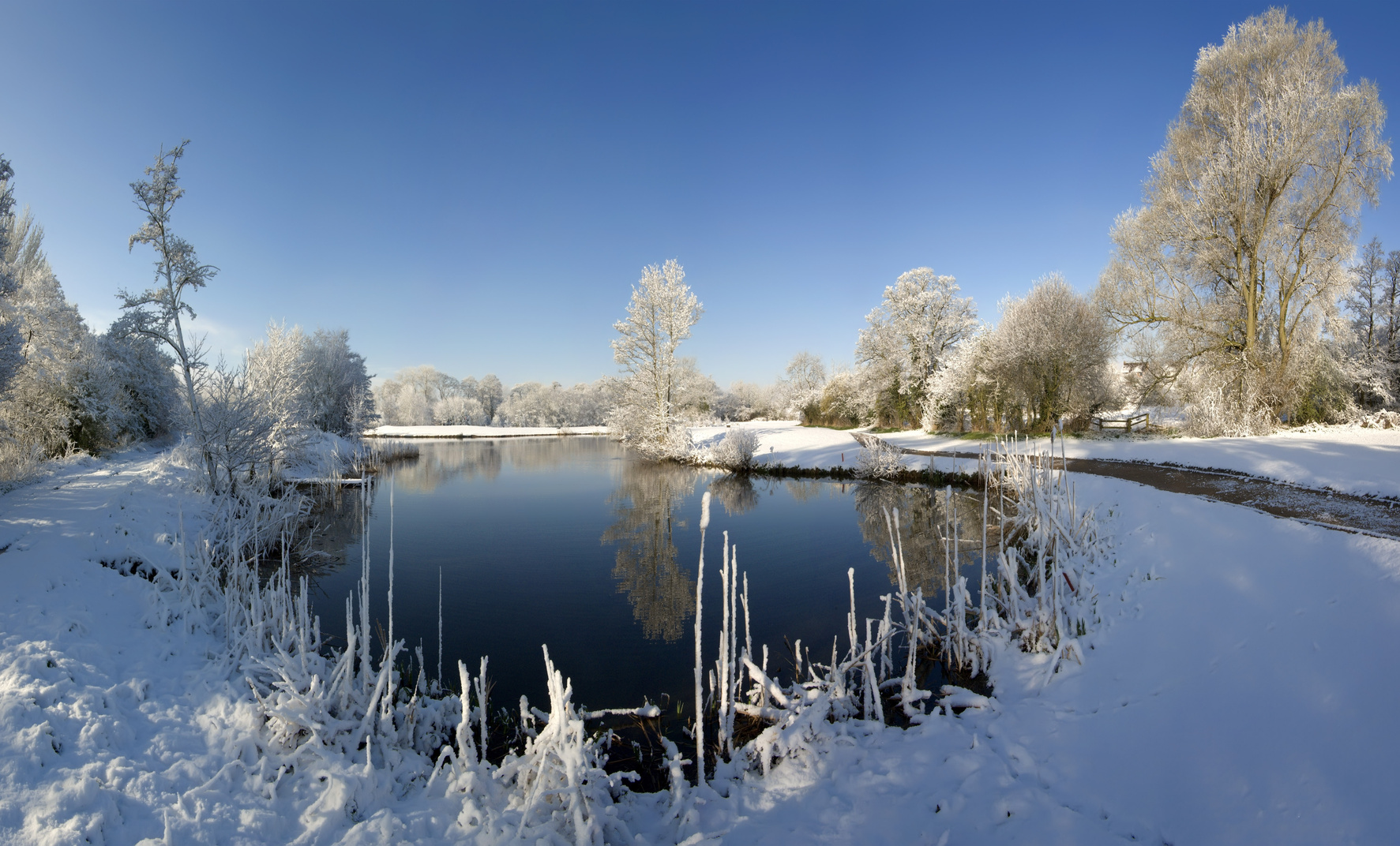 Aquasan aquaristik h ufige fragen aquasan for Gartenteich im winter fische